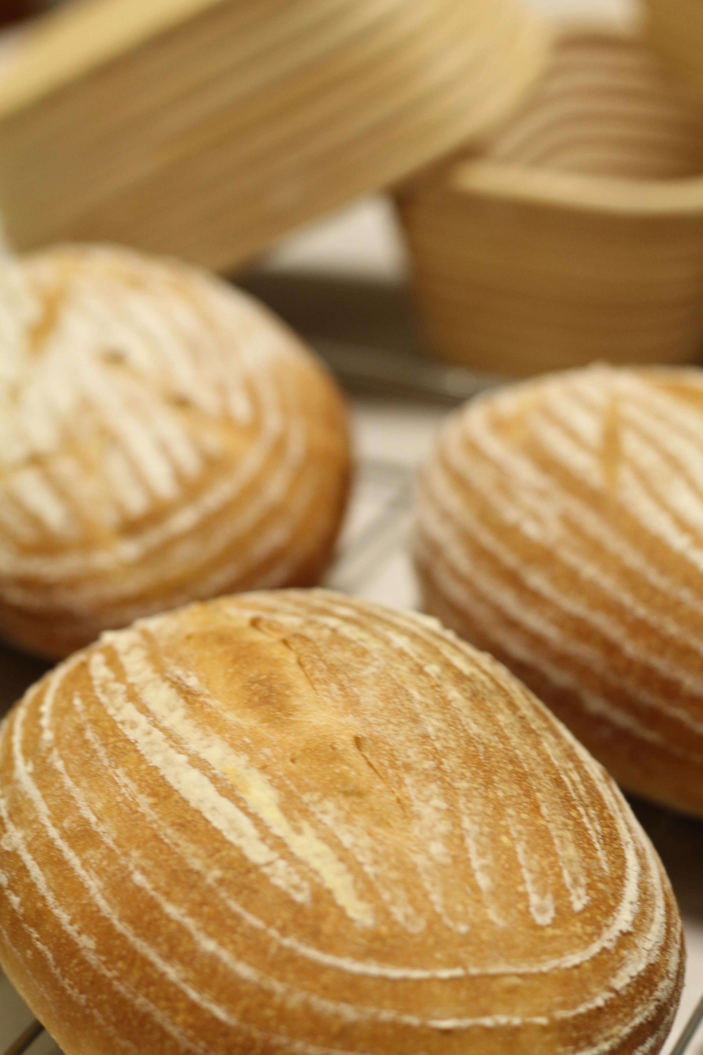自家製酵母・酒種で、焼いたカンパーニュ。