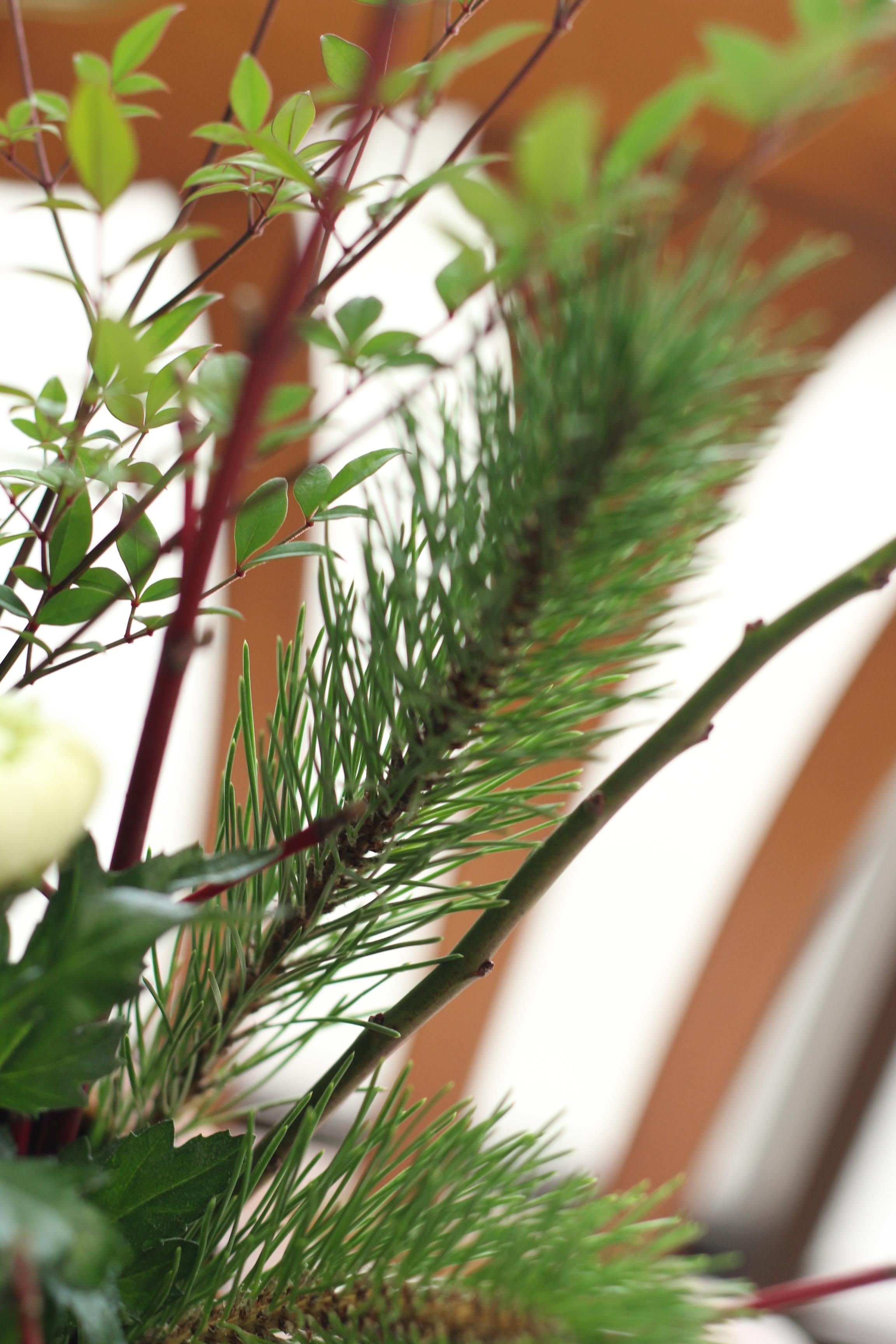お正月の花 (14)